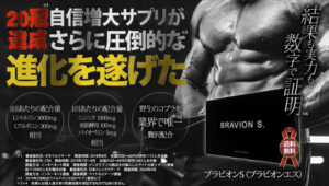 BRAVION S画像